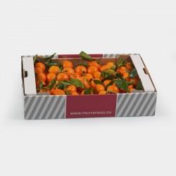 Box con Clementine
