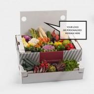 Gemüsebox TEST